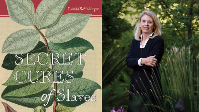 Secret Cures Of Slaves by Londa Schiebinger